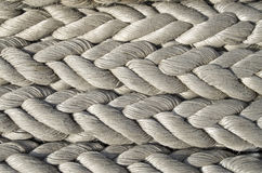 Old white ropes closeup Stock Images