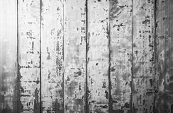 old white rough wood Royalty Free Stock Image
