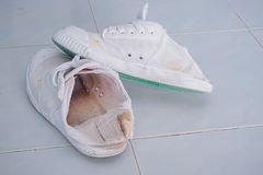 Old white shoes used to play sports. royalty free stock photo