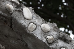Old white stone wall closeup. With gray background Stock Images