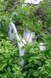 An old white toilet bowl lies in the grass. stock photography