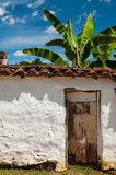 Old White Wall and Banana Tree Stock Photography