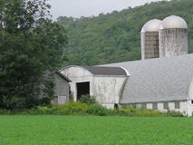 Sturdy old barn and silos could use a face lift royalty free stock images