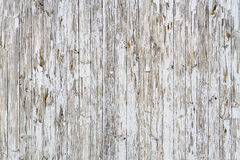 Old white weathered wooden background Royalty Free Stock Photos
