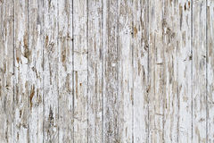 Old white weathered wooden fence Royalty Free Stock Image