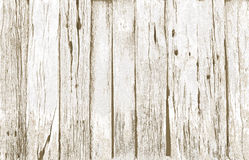 Old white wood background stock images