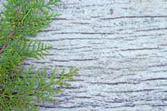 Old white wooden background, photo texture Royalty Free Stock Photo