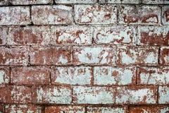 Old whitewashed brick wall Royalty Free Stock Image