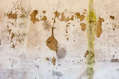 Old whitewashed wall with rich and various texture Stock Images