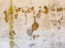 Old whitewashed wall with rich and various texture Royalty Free Stock Image