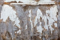 Old wood with peeling white paint royalty free stock images