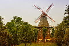 Old wind mill among the green trees in the Park Royalty Free Stock Images