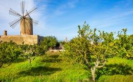 An old windmill in Algadia Mallorca. Spain stock image