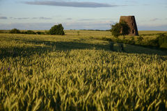 Old windmill in field Royalty Free Stock Images
