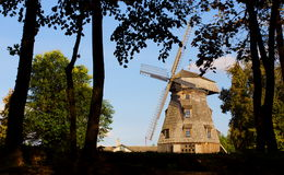 Old windmill landscape. And the border of trees Royalty Free Stock Images