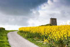 Old windmill. In rapeseed field Royalty Free Stock Images