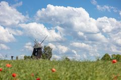 old windmill stands on a canola field in front of a blue sky with white clouds royalty free stock photo