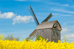 Old windmill surrounded by fields of rapeseeds Royalty Free Stock Photos