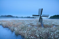 Old windmill on swamp with cotton-grass Stock Photo