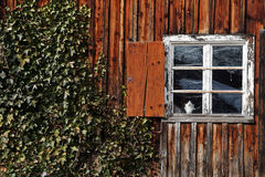 The old window Stock Photo