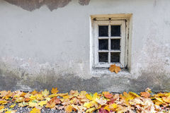 Old window at autumn. Old weathered window at autumn with a pile of yellow maple leaves on the ground Royalty Free Stock Image