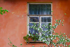 Old window background. Old window on a red concrete wall background Royalty Free Stock Photos