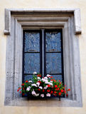 Old window and blooming flowers Stock Photos