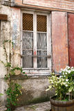 Old Window with Cat Curtains on Ancient Building Stock Photos