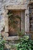 Old window closed. Old closed window of an old house Stock Photography