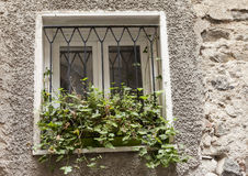Old window with closed shutters with flowers on the window sill on the stone wall. Italian Village Stock Photography