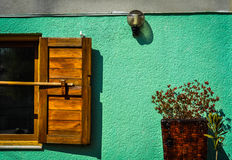 Old window composition. Composition of old window, lamp and plants Royalty Free Stock Images