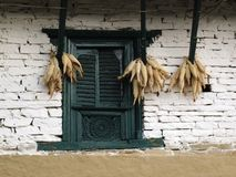 Old window and corn cobs Stock Photography