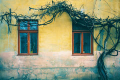Old window with cracked paint, vintage brick wall background with old window Stock Image