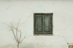 Old window and cracked wall. Tree in front of old house with cracked wall and wooden window Royalty Free Stock Photo