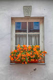 Old window and flower box. With orange flowers Stock Image