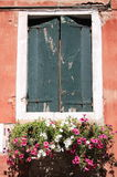 Old window with flower pots Royalty Free Stock Photo