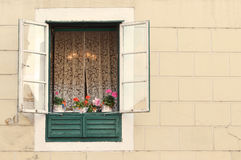 Old window with flowerpots Stock Photography