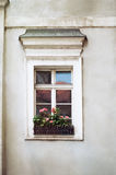 Old window with flowers, close up Royalty Free Stock Photos