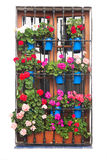 Old Window with Flowers Decirations  on white Stock Photos