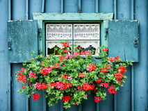 Old window and flowers. At a historic building Royalty Free Stock Photos