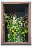 Old window with flowers Royalty Free Stock Photography