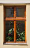 Old window. Flowers on the windowsill wooden windows Stock Photography