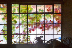 Old window in harmonic colors Stock Image
