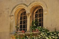 Old window of medieval house with jasmine Stock Photos