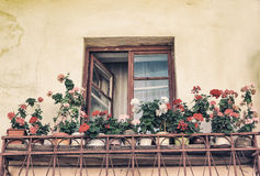 Old window in the old style photo image. Stock Image