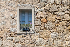 Old window with plant in ancient gray stone wall Royalty Free Stock Photos