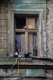 The old window in the ruined house,. The broken glass royalty free stock photography