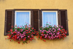 An old window with shutters in Tübingen, Germany Stock Image
