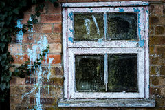 Old window in small shed Stock Image