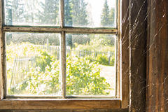 Old window with spiderweb Stock Image
